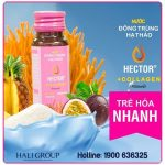 nuoc-dong-trung-ha-thao-collagen-hector