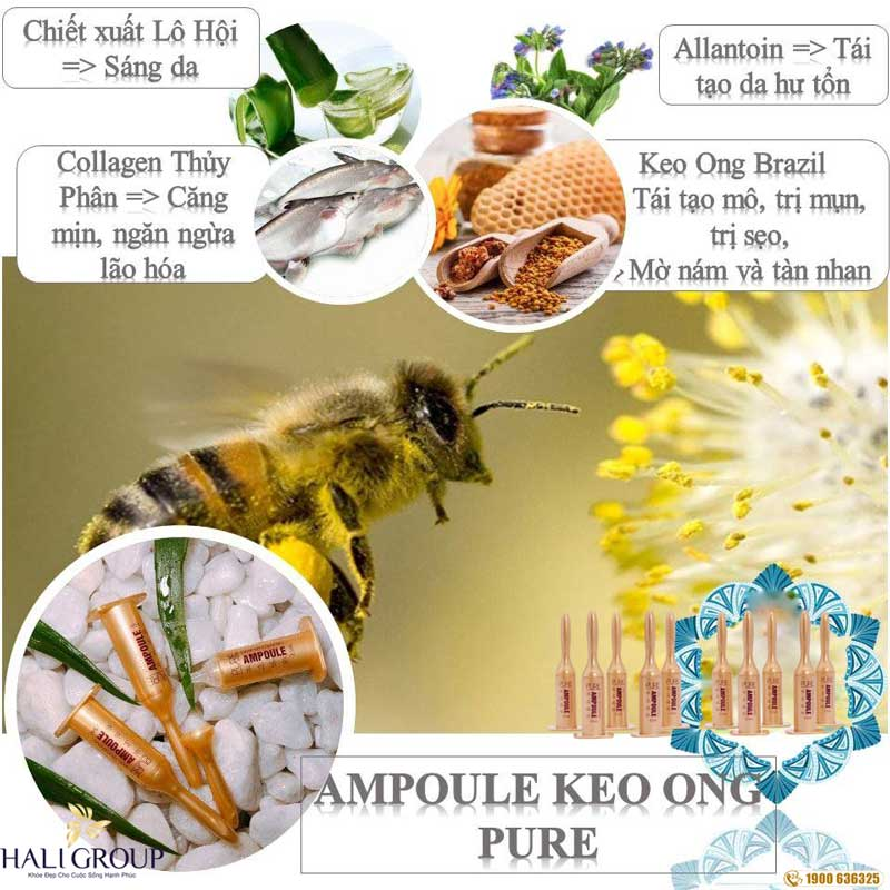 tinh chất keo ong Ampoule